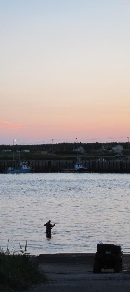 Je ne les connais pas, mais il y a des pêcheurs quasi chaque soir dans l'embouchure de la rivière.